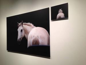 Artblog interviews Bridgette Mayer on Eileen Neff's solo exhibition