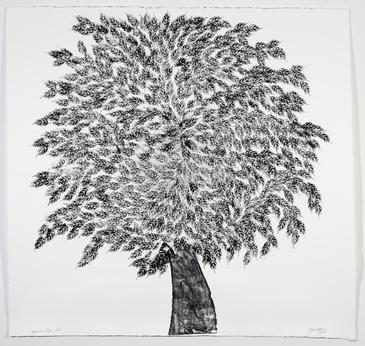 """TD Forests """"Art for Trees"""" Online Auction Live"""