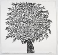 "TD Forests ""Art for Trees"" Online Auction Live"