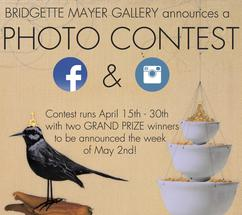 "BMG ""Nature Decor"" PHOTO CONTEST April 2016!"